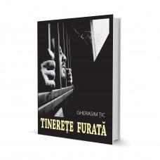 Tinerete Furata - Gherasim Tic